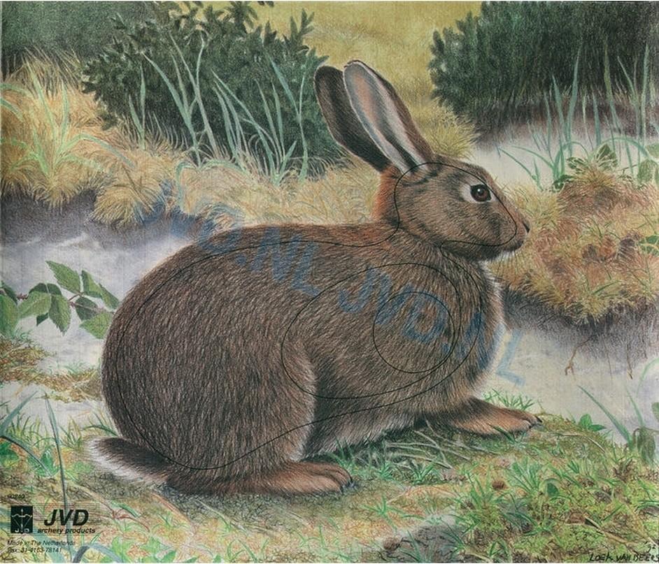 Blazoen konijn
